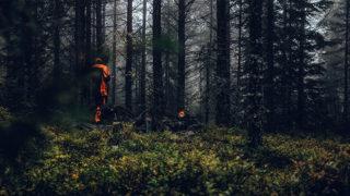 狩猟イメージ